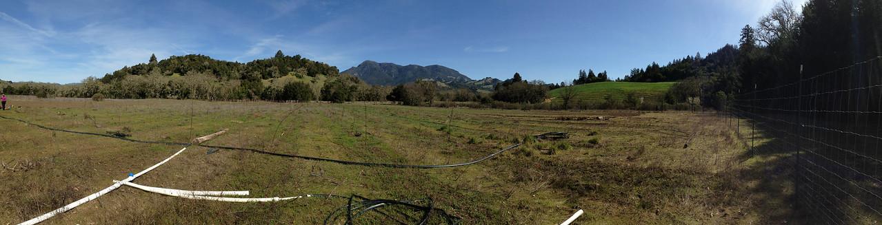 Laufenberg Ranch