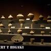 jinsha relic museum-7
