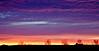 Sunrise over Chihuahuan desert---Marfa, TX.