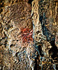 Pictograph (rock art); white cruciform in red square---San Esteban site.