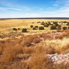 "Hawikku Site--looking toward the South.<br /> <br /> On July 7, 1540, Coronado and his invading troops advanced across these plains. In the center was the village entrance.<br /> <br /> Seeing armored men on horseback for the first time the Zuni described them as ""shiny men with four legs."""