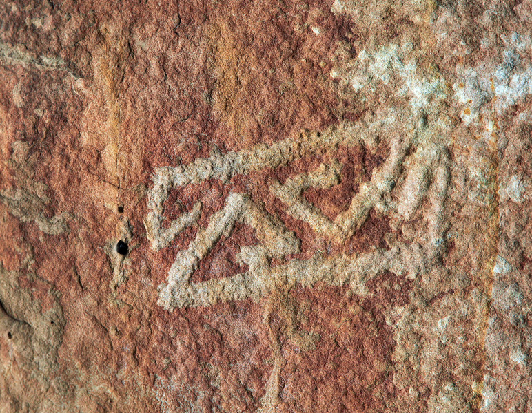 In this closeup view, the chipping that produces a petroglyph is quite apparent.