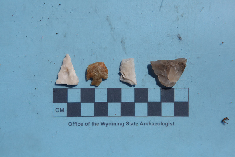 21. A variety of projectile points discovered at a new prehistoric village in the Wind River Range.