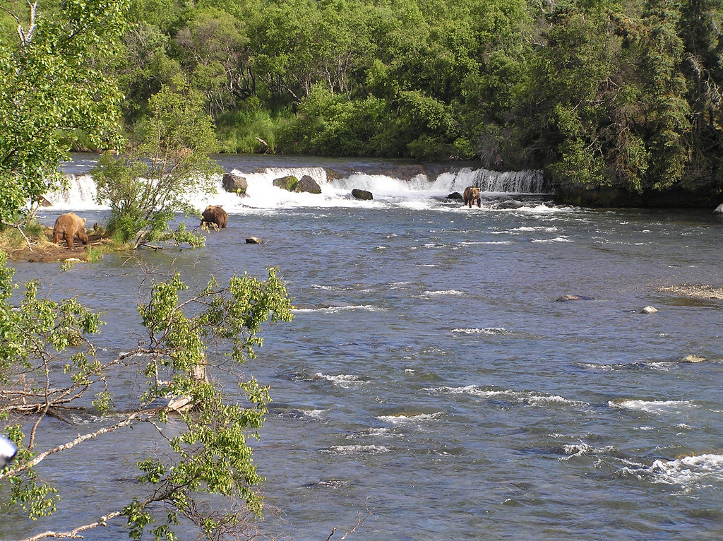<br>View of the Falls From the River Platform