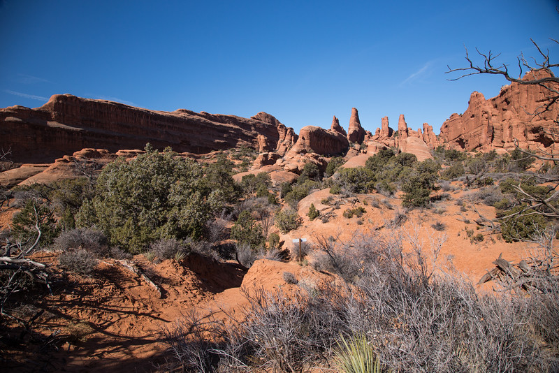 Scenes from 6 mile primative trail around Devils Garden