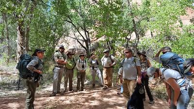 Wilderness Volunteers: 2017 Arches National Park Service Trip