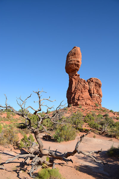 Balanced Rock at Arches National Park landscape.