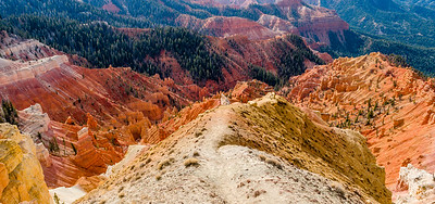 Color, Cedar Breaks National Monument