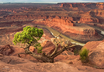 Arches and Canyonlands National Parks