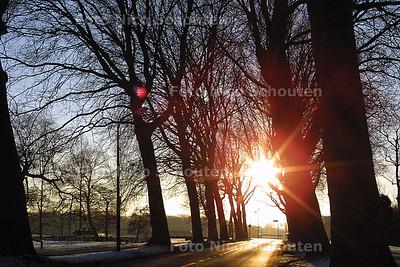 HC - BOMEN AAN DE BACKERS HAGENLAAN - WASSENAAR 9 JANUARI 2003 - FOTO: NICO SCHOUTEN