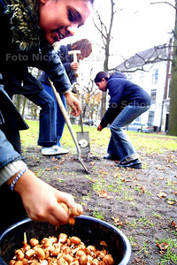 HC - KROKUSBOLLEN LANGE VOORHOUT - Kinderen van het Edithsteincollege doen de bollen, die aangeboden zijn door de vrienden van het Voorhout, in de grond - DEN HAAG  13 NOVEMBER 2003 - FOTO: NICO SCHOUTEN