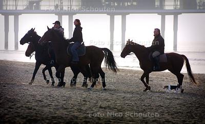 HC - BRABANDSE PAARDEN OP SCHEVENINGEN - 11 NOVEMBER 2003 - FOTO: NICO SCHOUTEN