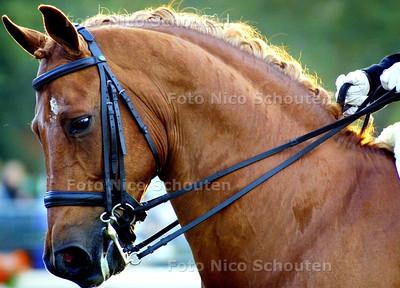HC - KIEVITTROFFEE - WASSENAAR 17 JULI 2004 - FOTO NICO SCHOUTEN