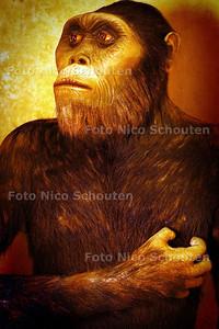 MUSEON DEPOT - Aapmens - DEN HAAG 11 MAART 2003 - FOTO: NICO SCHOUTEN