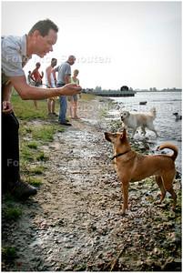 AD/HC - HONDJE KYRA - Op het hondenstrandje bij het Noorder A - ZOETERMEER 6 JULI 2006 - FOTO NICO SCHOUTEN