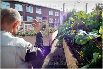 AD/HC - kunstproject met mobiele volkstuinen, De tuin uit Ypenburg wordt op zijn plaats gezet in het Transvaal  - DEN HAAG 8 SEPTEMBER 2006 - FOTO NICO SCHOUTEN
