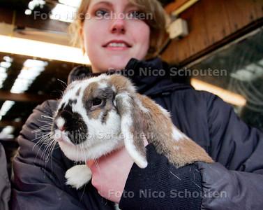 AD/HC - (KNAAG) DIERENOPVANG NA DE BRAND - konijn met verschroeide snorharen - ZOETERMEER 26 FEBRUARI 2007 - FOTO NICO SCHOUTEN