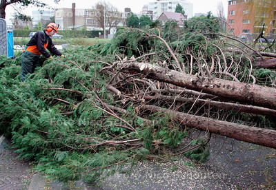 AD/HC - STORM, Omgewaaide coniferen versperren het Jaagpad in Riswijk - RIJSWIJK 18 JANUARI 2007 - FOTO NICO SCHOUTEN