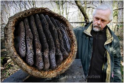AD/HC - Imker Pieter Burger (58) heeft geen bijen meer - RIJSWIJK 25 FEBRUARI 2008 - FOTO NICO SCHOUTEN