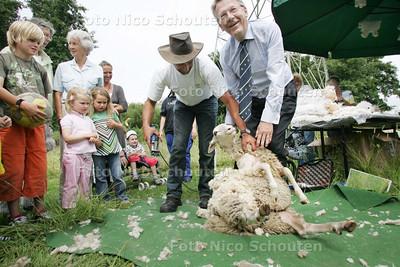 Start door wethouder Beimers van het traditionele schaapscheren. - LEIDSCHENDAM 21 JULI 2009 - FOTO NICO SCHOUTEN