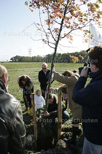 boomplantdag in bentwoud. kinderen plaatsen bomen(?) - BENTHUIZEN 17 OKTOBER 2009 - FOTO NICO SCHOUTEN