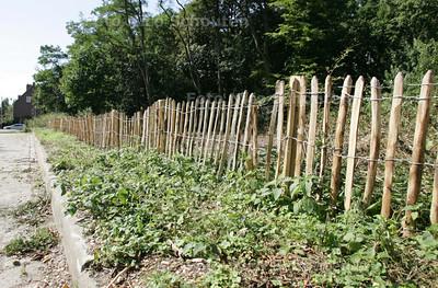 Nieuw hek en omgezaagde bomen op de Laan van Poot - DEN HAAG 8 SEPTEMBER 2009 - FOTO NICO SCHOUTEN