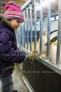 Opening Stadsboerderij De Weidemolen - ZOETERMEER 7 FEBRUARI 2010 - FOTO NICO SCHOUTEN