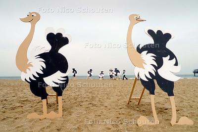 """actiegroep """"Wilde dieren de ten uit"""" plaatst - nep - struisvogels op het strand van Scheveningen met hun kop in het zand, vanwege de struisvogelpolitiiek van kamerleden - DEN HAAG 1 JUNI 2010 - FOTO NICO SCHOUTEN"""
