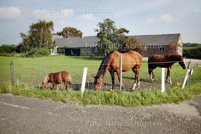 De Annahoeve aan de (oude) Voorweg te. De gemeente zoetermeer heeft een prijsvraag uitgeschreven voor een goede bestemming voor deze oude boerderij - ZOETERMEER 21 SEPTEMBER 2010 - FOTO NICO SCHOUTEN