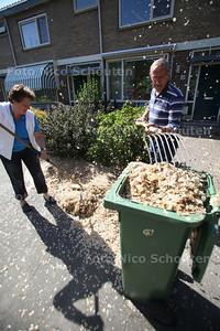 Bewoners van de van Duivenvoordelaan ergeren aan de enorme hoeveelheden vruchtzaadjes van iepen (?).  De heer Aad de Jong en buurvrouw Marianne Ooijik zijn deze weken bijna dagelijks in de weer om de 'sneeuwbuien' vruchtzaadjes van de iepen weg te werken. - WASSENAAR 11 MEI 2011 - FOTO NICO SCHOUTEN