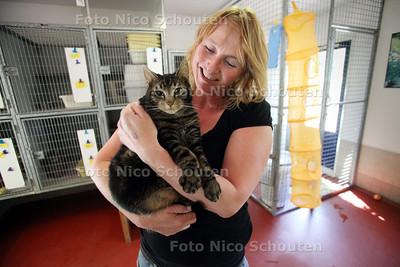 Judith Split met poes Armada in het vernieuwde kattenverblijf van Stichting Nationale Dierenzorg - WASSENAAR 4 MEI 2011 - FOTO NICO SCHOUTEN