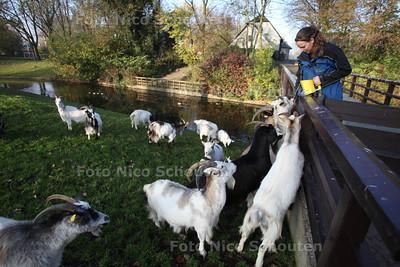 Het Geiteneiland, Stadsboerderij Het Buitenbeest - ZOETERMEER 10 NOVEMBER 2011 - FOTO NICO SCHOUTEN