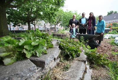 Omwonenden in hun permatuin in de Schilderswijk met initiatiefnemer Bessie Schadee (r) - DEN HAAG 29 MEI 2012 - FOTO NICO SCHOUTEN