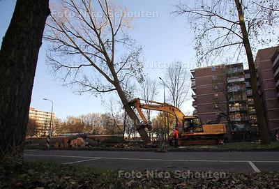 Bomenkap op de meerzichtlaan - ZOETERMEER 14 NOVEMBER 2012 - FOTO NICO SCHOUTEN