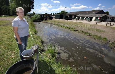 Leeggelopen sloot bij manege Blauw Gele Vendel - PIJNACKER 19 JULI 2013 - FOTO NICO SCHOUTEN