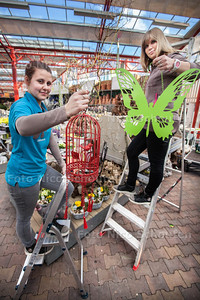 Bij de Intratuin zetten werknemers de eerste paasdecorateis neer - Jennifer en Marjolein zijn druk bezig - ZOETERMEER 21 FEBRUARI 2014 - FOTOGRAFIE NICO SCHOUTEN