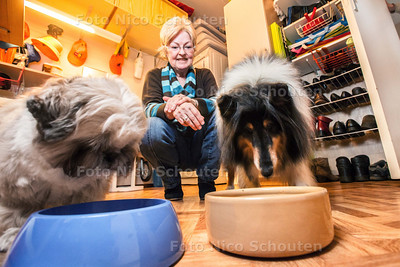 Marilynn wil een voedselbank voor huiisdieren opzetten vanuit haar berging - Marilynn met honden Snowy(l) en Jacqlyn in haar berging - FOTOGRAFIE NICO SCHOUTEN