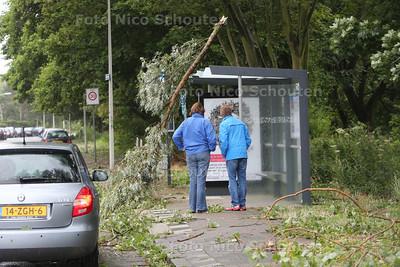 Storm - Tak op bushalte Muurbloemweg - DEN HAAG 25 JULI 2015 - FOTO NICO SCHOUTEN