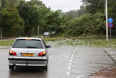Storm - Omgevallen boom blokkeert de Machiel Vrijenhoeklaan - DEN HAAG 25 JULI 2015 - FOTO NICO SCHOUTEN