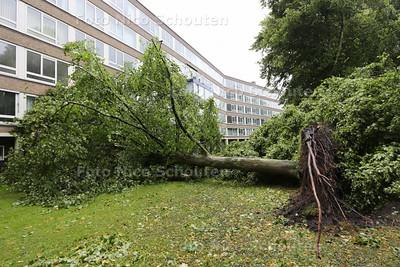 Storm - Omgevallen bomen Bezuidehoudseweg - een boom is tegen een flat gevallen - DEN HAAG 25 JULI 2015 - FOTO NICO SCHOUTEN