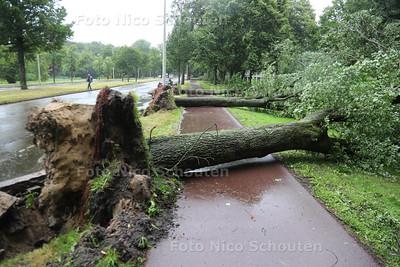 Storm - Omgevallen bomen Bezuidehoudseweg - DEN HAAG 25 JULI 2015 - FOTO NICO SCHOUTEN