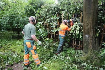 In de Japanse tuin hard aan het werk om stormschade op te ruimen - WASSENAAR 27 JULI 2015 - FOTO NICO SCHOUTEN