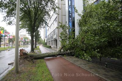 Storm - Omgevallen boom tegen gebouw Johan de Wittlaan - DEN HAAG 25 JULI 2015 - FOTO NICO SCHOUTEN
