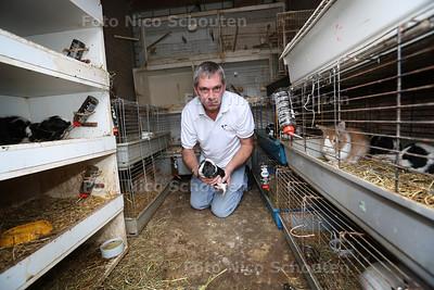Dierenambulance haalt honderden dieren weg op Azurblauw. Chris Martens van de Dierenambulance in de schuur waar tientallen konijnen, cavia's en duiven zaten - ZOETERMEER 19 NOVEMBER 2015 - FOTO NICO SCHOUTEN