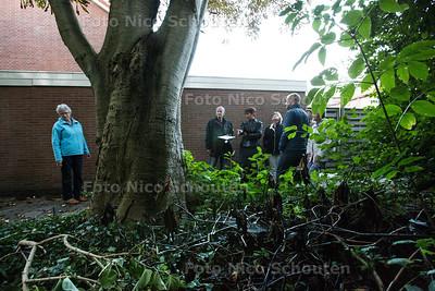 wijkmanager Kees de Koning (2e van links) met bewoners bij een kastanje die overlast geeft - PIJNACKER 29 SEPTEMBER 2015 - FOTO NICO SCHOUTEN