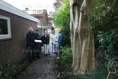 wijkmanager Kees de Koning  (links) met bewoners bij een kastanje die overlast geeft - PIJNACKER 29 SEPTEMBER 2015 - FOTO NICO SCHOUTEN
