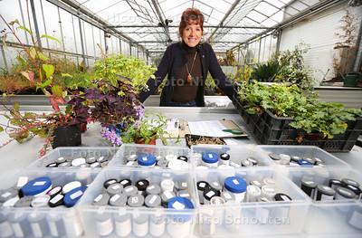 Wilma van der Sande en de plantenzadenbak van Groei en bloei - HONSELERSDIJK 23 NOVEMBER 2016 - FOTO NICO SCHOUTEN