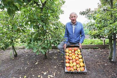 Onder de appelbomen 2