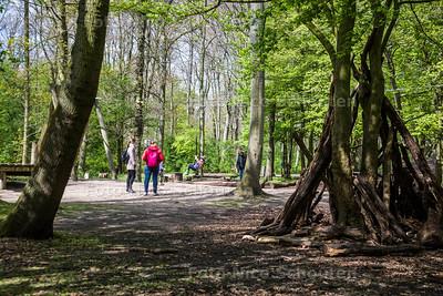 Haagse Bos (tussen L v Noi en Maliveld) - DEN HAAG 18 APRIL 2017 - FOTO NICO SCHOUTEN