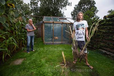 Rene Barendse in zijn geruimde tuin. Zijn wietplanten die hij kweekte voor medicinale wiedolie zijn door de politie vernietigd - NAALDWIJK 30 AUGUSTUS  2017 - FOTO NICO SCHOUTEN